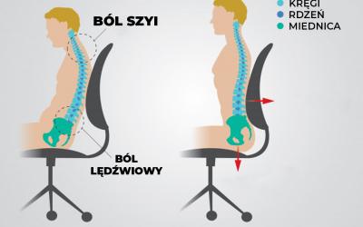 Anatomia siedzenia
